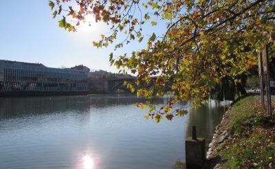 A 400 éves szőlő és a zöld arany nyomában – Szlovénia gyöngyszemei